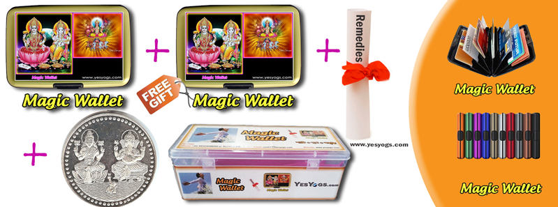 Magic Wallet Solve your Financial Problem
